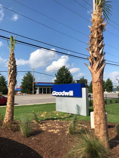 Goodwill-Ribbon-19